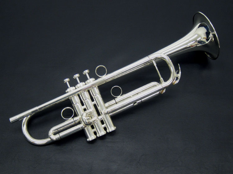 BPTR-750SS
